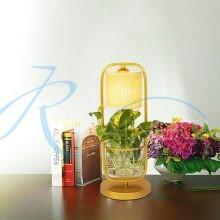Настольная лампа с абажуром, под растения 4120/1T FGD